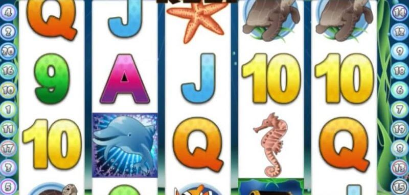 Fortuna casino - Crazy 7 + Dolphin Reef online hry