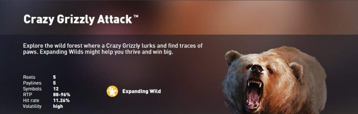 Synot Tip - online casino - Crazy Grizzly Attack